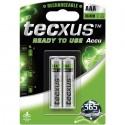 TECXUS 14064 2TEM Ni-MH AAA 800 Επαναφορτιζόμενη μπαταρία